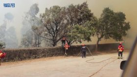 video-▶-homenagem-aos-bombeiros-de-portugal