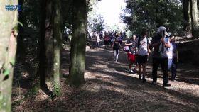 mais-de-400-alunos-participaram-na-caminhada-concelhia